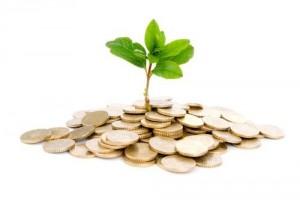 economia-verde-paliar-efectos-del-calentamien-l-1